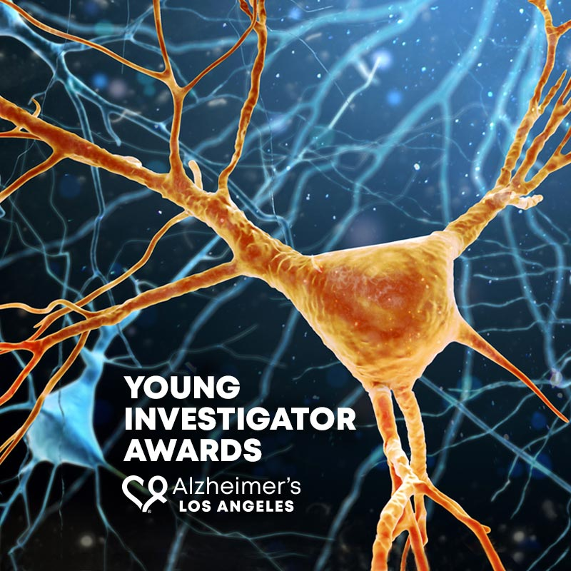 Young Investigator Awards